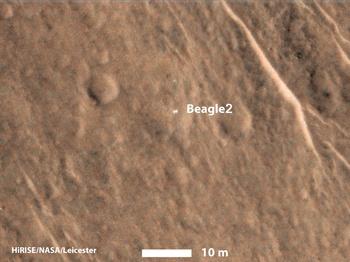 beagle2.jpg